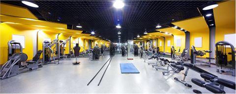 Fitness / Designboden